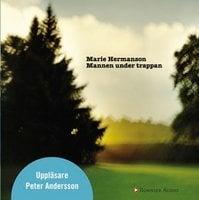 Mannen under trappan - Marie Hermanson