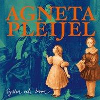 Syster och bror - Agneta Pleijel
