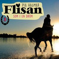 Som i en dröm - Pia Hagmar