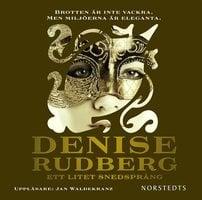 Ett litet snedsprång - Denise Rudberg