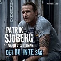 Det du inte såg - Markus Lutteman, Patrik Sjöberg