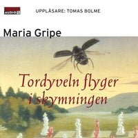 Tordyveln flyger i skymningen - Maria Gripe