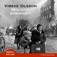 Molnfri bombnatt - Vibeke Olsson