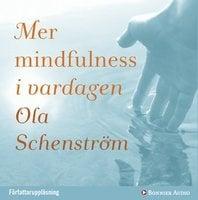 Mer mindfulness i vardagen - Ola Schenström