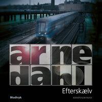 Efterskælv - Arne Dahl