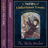 Book the Third – The Wide Window - Lemony Snicket
