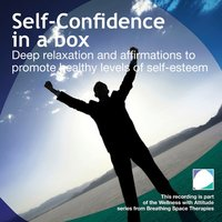 Self Confidence in a box - Annie Lawler