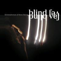 Blind vej - Steen Harvig