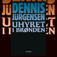 Uhyret i brønden - Dennis Jürgensen