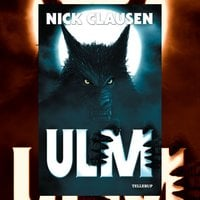 Ulm - Nick Clausen