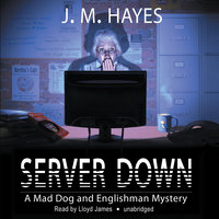 Server Down - J.M. Hayes