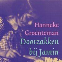 Doorzakken bij Jamin - Hanneke Groenteman