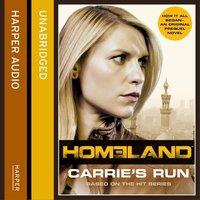 Homeland - Andrew Kaplan