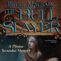 The Bull Slayer - Bruce Macbain
