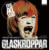 Glaskroppar - Erik Axl Sund