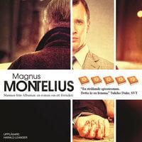 Mannen från Albanien - En roman om ett förräderi - Magnus Montelius