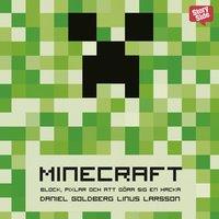 """Minecraft: block, pixlar och att göra sig en hacka : Historien om Markus """"Notch"""" Persson och spelet som vände allt upp och ned"""