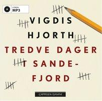 Tredve dager i Sandefjord - Vigdis Hjorth