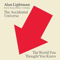 The Accidental Universe - Alan Lightman
