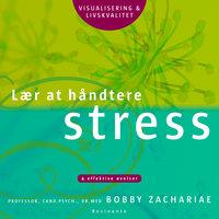 Lær at håndtere stress - Bobby Zachariae