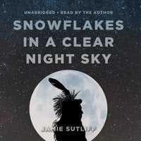 Snowflakes in a Clear Night Sky - Jamie Sutliff