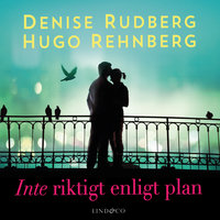 Inte riktigt enligt plan - Denise Rudberg,Hugo Rehnberg