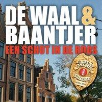 Een schot in de roos - De Waal & Baantjer