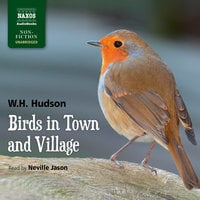 Birds in Town and Village - W.H. Hudson