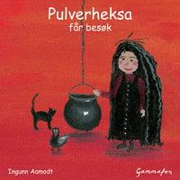 Pulverheksa får besøk - Ingunn Aamodt