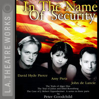 In the Name of Security - Peter Goodchild