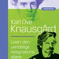 Livet i den uendelige resignations sfære - Karl Ove Knausgård