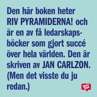 Riv pyramiderna - en bok om den nya människan, chefen och ledaren - Jan Carlzon
