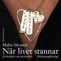 När livet stannar : en berättelse om att överleva - Malin Sävstam