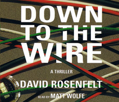 Down To The Wire - David Rosenfelt
