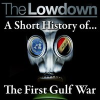 The Lowdown: A Short History of The First Gulf War - Robert Johnson