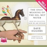 The Only Meaning of the Oil-Wet Water - Dave Eggers