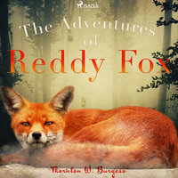 The Adventures of Reddy Fox - Thornton W. Burgess