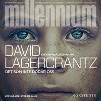Det som inte dödar oss : Millennium 4 - David Lagercrantz