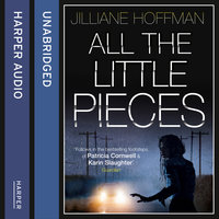 All the Little Pieces - Jilliane Hoffman