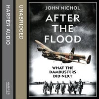 After the Flood - John Nichol