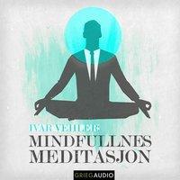 Mindfulness - Meditasjon - Ivar Vehler