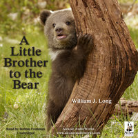 A Little Brother to the Bear, and Other Animal Stories - William J. Long