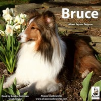 Bruce - Albert Payson Terhune