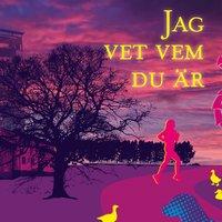 Jag vet vem du är - Kerstin Erlandsson-Svevar