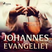 Johannesevangeliet - Various Authors