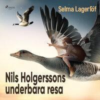 Nils Holgerssons underbara resa - Selma Lagerlöf