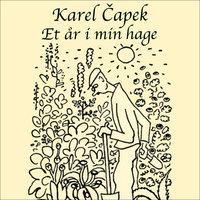 Et år i min hage - Karel Capek