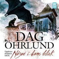 Något i hans blick - Dag Öhrlund
