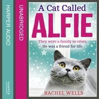 A Cat Called Alfie - Rachel Wells