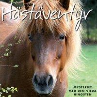 Hästäventyr - Mysteriet med den vilda hingsten - Marie Louise Rudolfsson